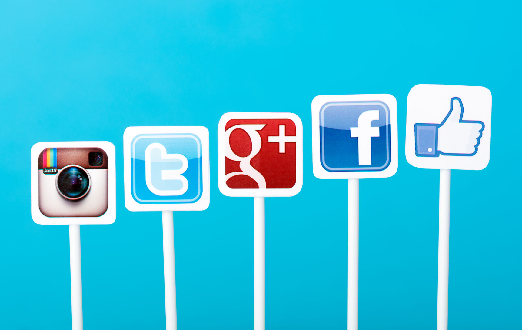 "Managing Social Media - social media icon images on ""sticks"""