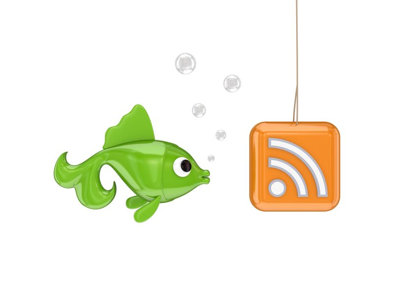 Blogging Tips - Fish looking at hook with RSS symbol
