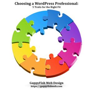 Choosing a WordPress Professional
