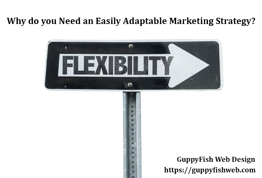 Why do you Need an Easily Adaptable Marketing Strategy? One Way sign with word flexibility